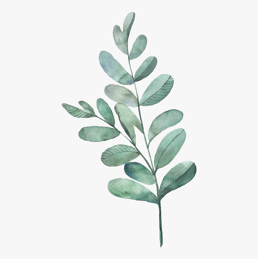 Watercolor Painting Leaf Illustration Watercolor Leaves - Watercolor Leaves Transparent Background, Transparent Clipart