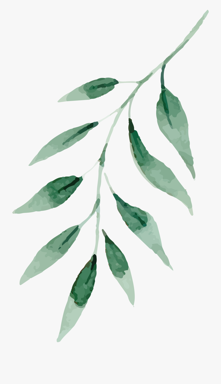 Watercolor Painting Drawing Leaf - Watercolor Green Leaves Png, Transparent Clipart