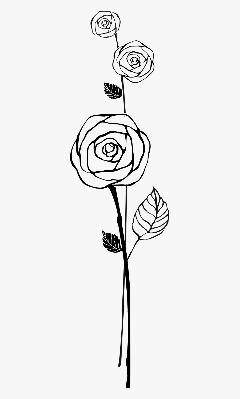 Black Rose Outline Png, Transparent Clipart