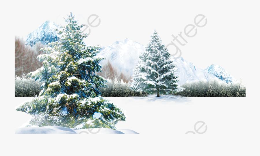 Winter Scene Tree Snow - Pine Tree Snow Png, Transparent Clipart