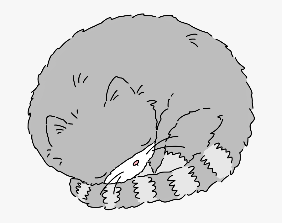 #cat #animal #pet #sleeping #tired #ftesticker #freetoedit - Sketch, Transparent Clipart