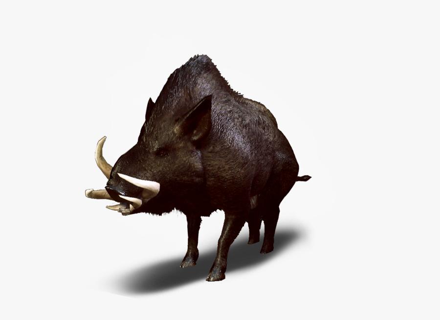 Dzik Wiedźmin - Witcher 3 Wild Boar, Transparent Clipart