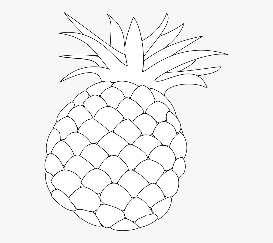 Pineapple, Outline, Food, Fruit, Health, Hawaii, Sweet - Pineapple Fruit Line Draw, Transparent Clipart