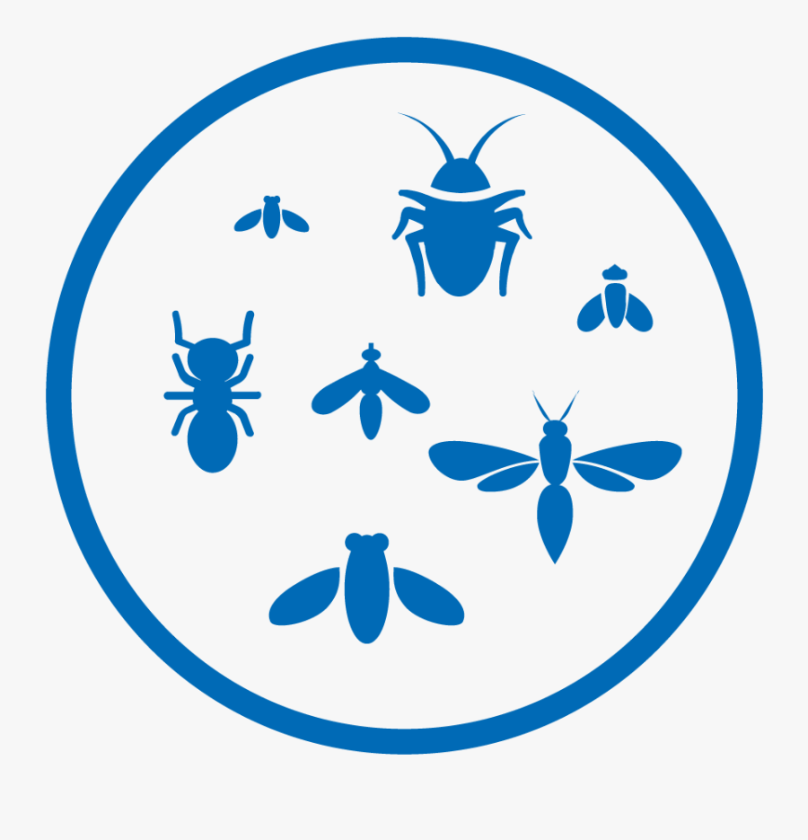 Spraying In Insects Clipart, Transparent Clipart