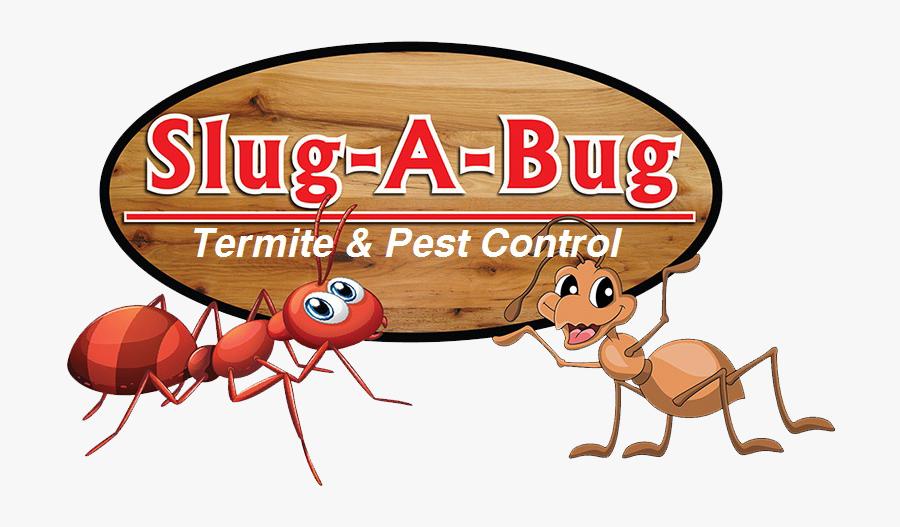 Slug A Bug Inc - Cartoon, Transparent Clipart