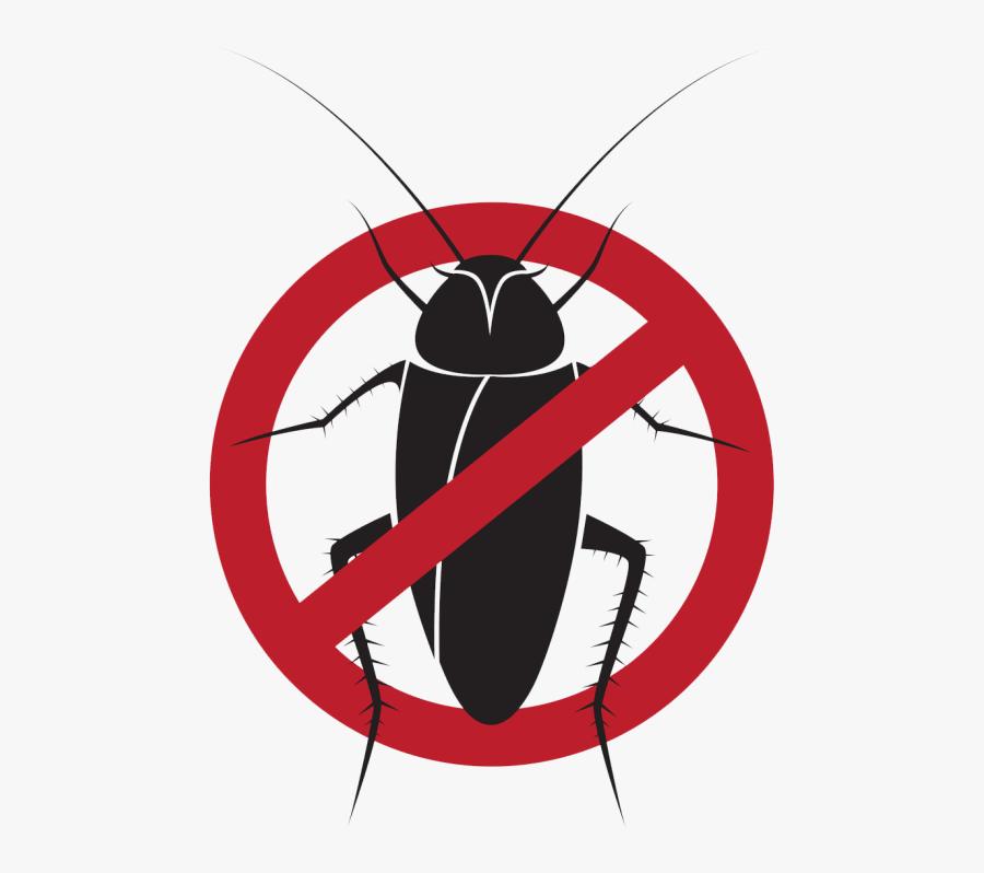 Cockroach Control In Waterloo, Ia - Stop Cucarachas, Transparent Clipart