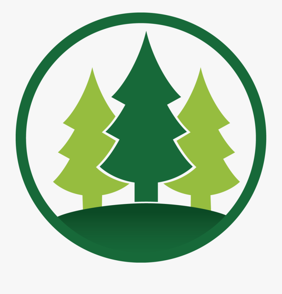Quaker Meadow Christian - Pine Camp Clip Art, Transparent Clipart