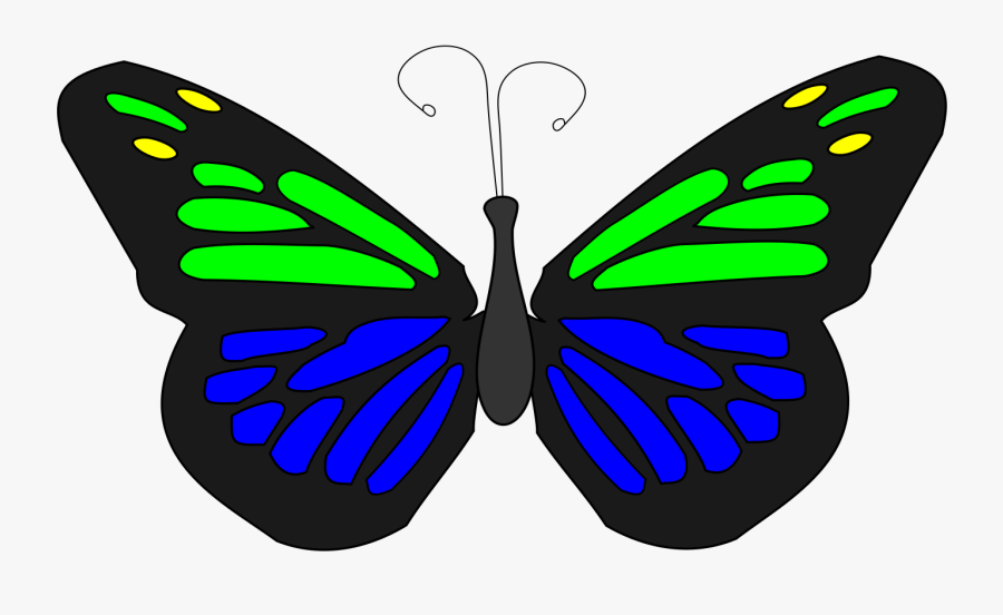 Butterfly Animation - Transparent Butterfly Animated Png, Transparent Clipart