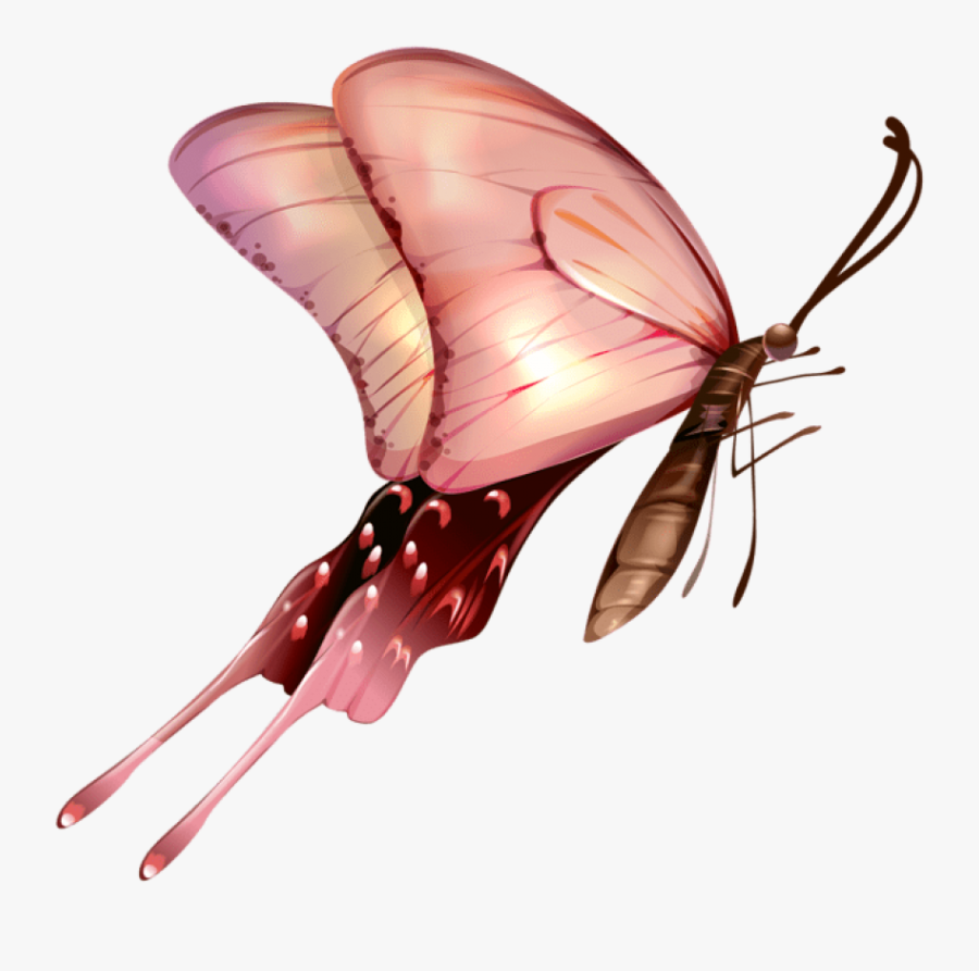 Download Butterfly Transparent Clipart Photo Top Png - Fondos De Pantalla De Mariposas, Transparent Clipart