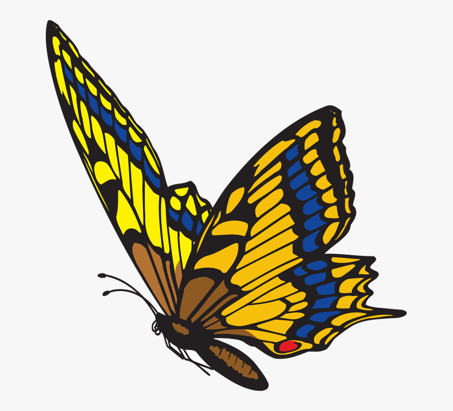 Monarch Butterfly Pictures Butterfly Flying Clipart - ิ Butterfly Animated Gif, Transparent Clipart