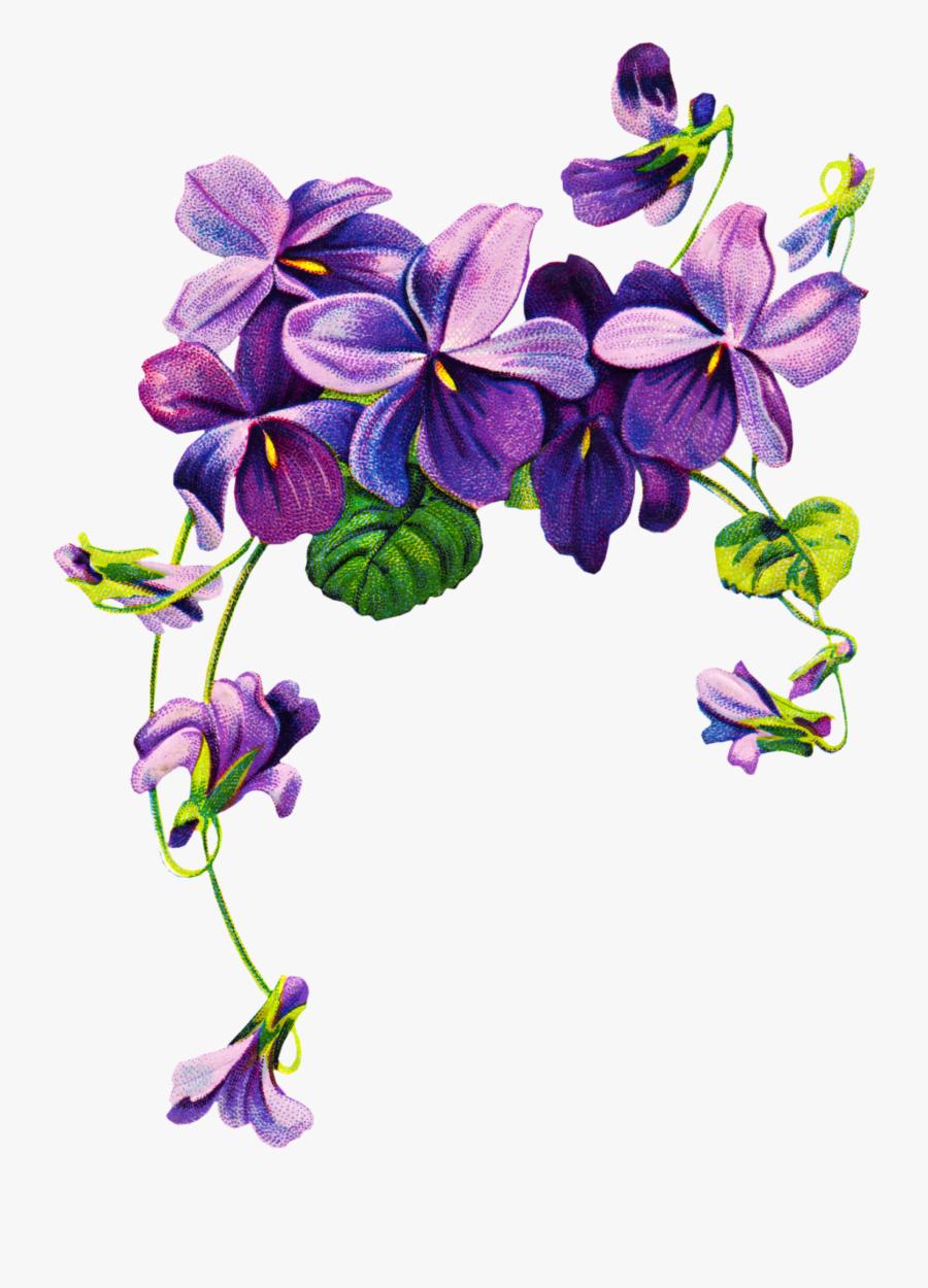 Transparent Purple Flowers Border Png, Transparent Clipart