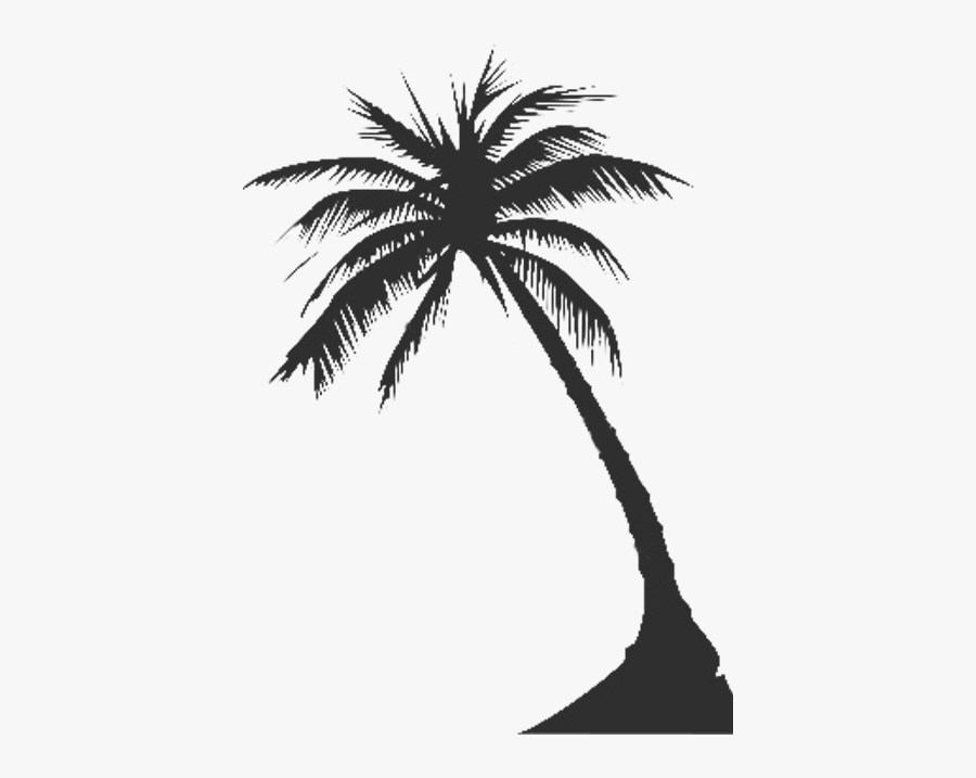 Free Download Clip Art - White Palm Tree Silhouette Png, Transparent Clipart