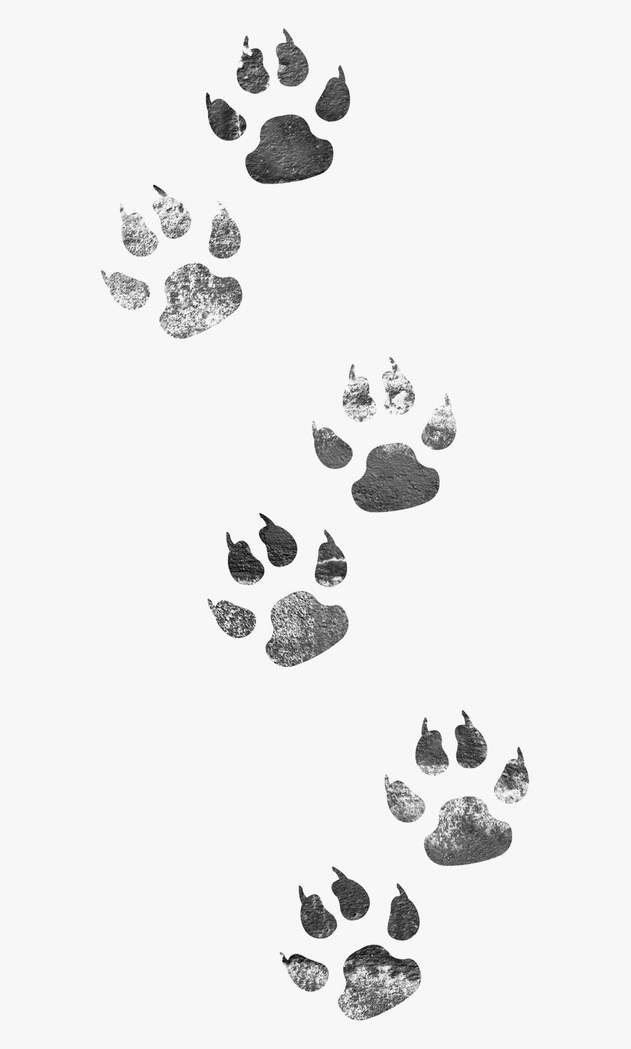 Footprints Dog Cat Png Image High Quality Clipart - Animal Tracks Clip Art, Transparent Clipart