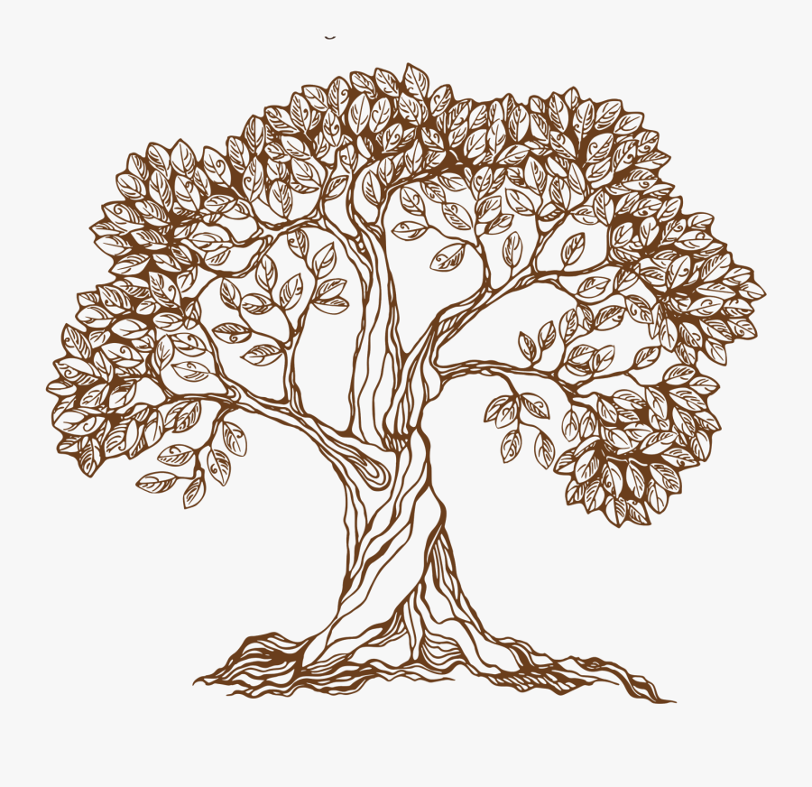 Old Drawing Apple Tree - Banyan Tree Pencil Drawing, Transparent Clipart