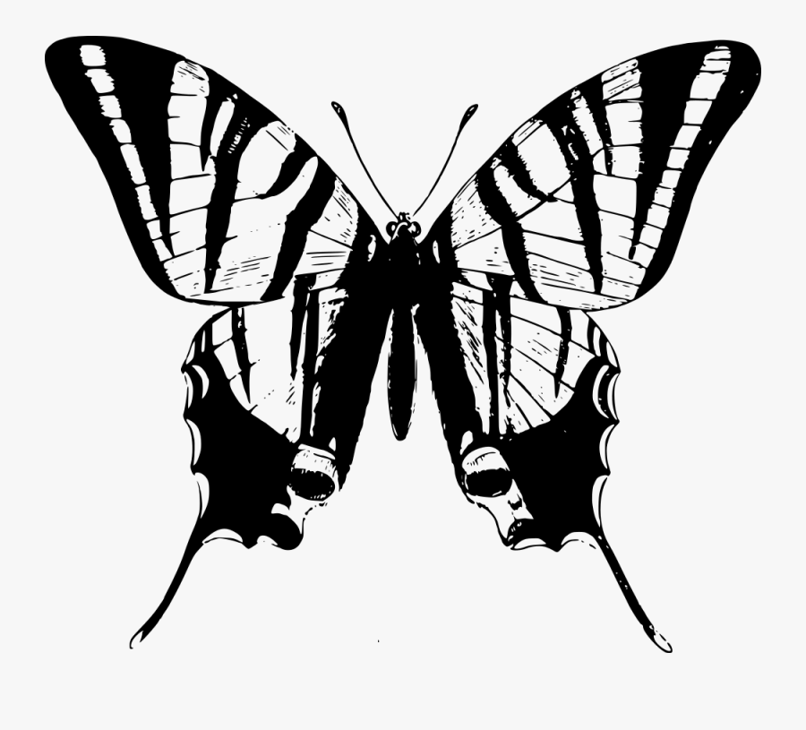 Black And White Clipart Butterflies - Swallowtail Butterfly Black And White Clipart, Transparent Clipart