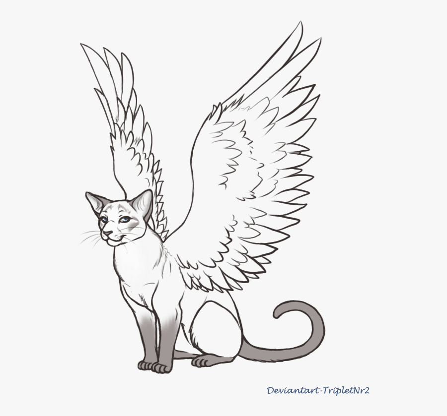 Wings Lineart Siamese Cat For Free Download - Angel Cat Wings Drawing, Transparent Clipart