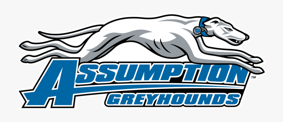 Assumption College Greyhounds, Transparent Clipart