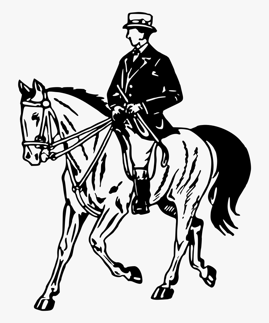 Horse And Rider - Clipart Of Horse Riding, Transparent Clipart