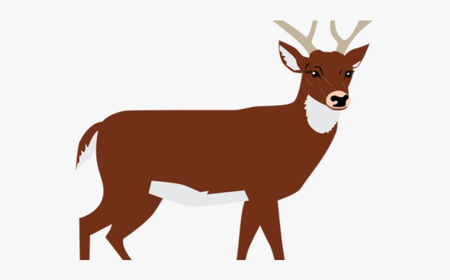 Deer Clipart Png, Transparent Clipart