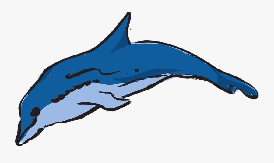 Dolphin, Ocean, Leaping, Creature, Marine, Life, Sea - Apa Warna Lumba Lumba, Transparent Clipart