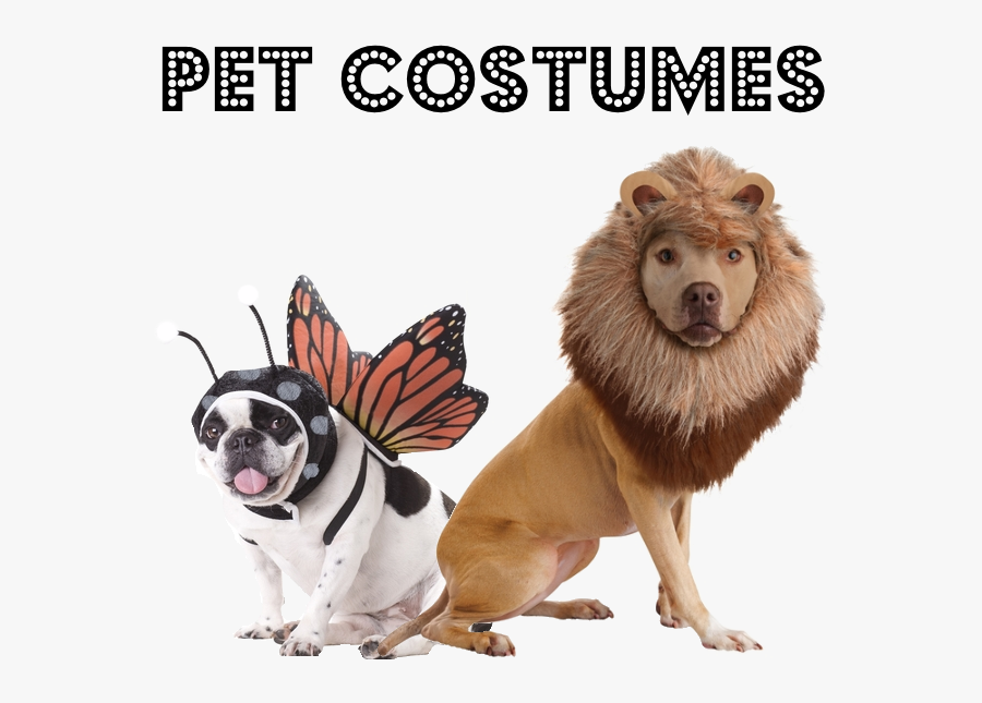 Dogs In Animal Costumes , Transparent Cartoons - Dogs In Other Animal Costumes, Transparent Clipart