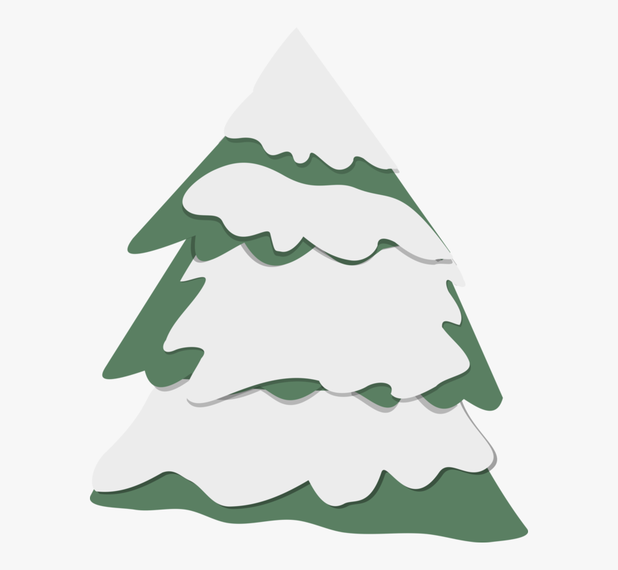 Fir,pine Family,plant - Christmas Tree, Transparent Clipart