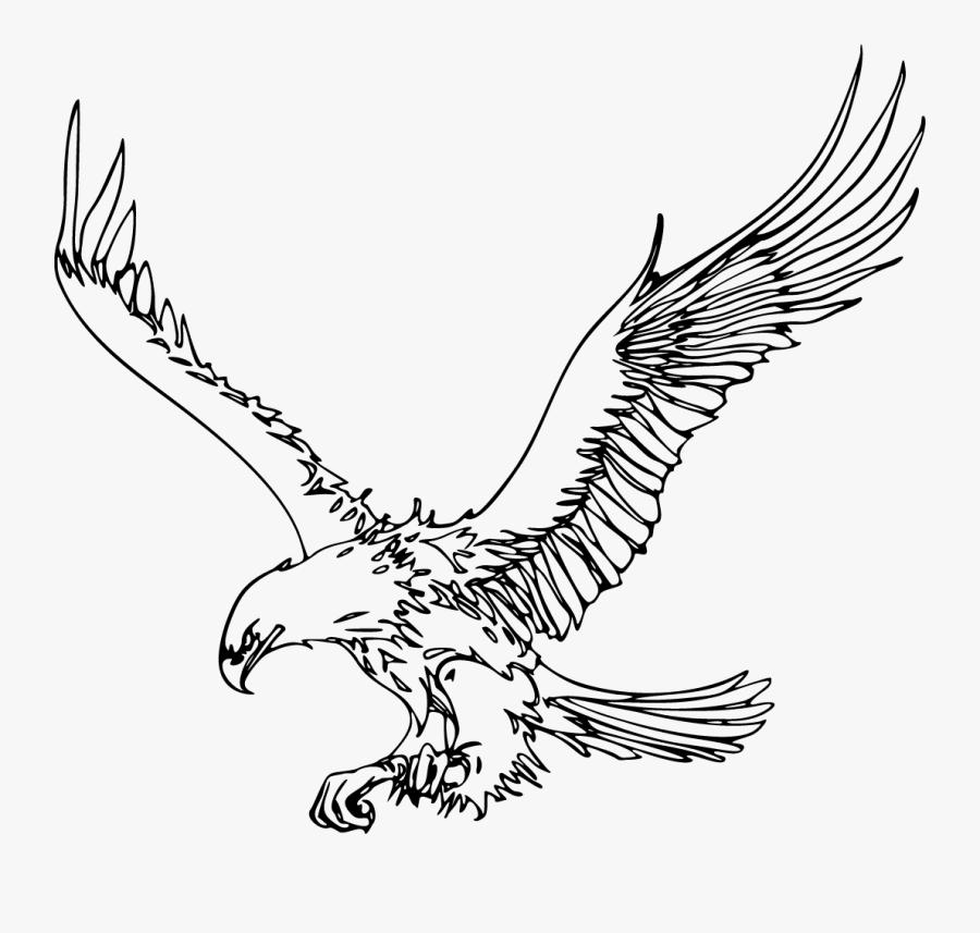 Flying Eagle Outline Clipart - Outline Images Of Eagle, Transparent Clipart