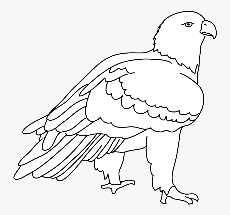 Transparent Eagle Head Clipart Black And White - Bald Eagle, Transparent Clipart