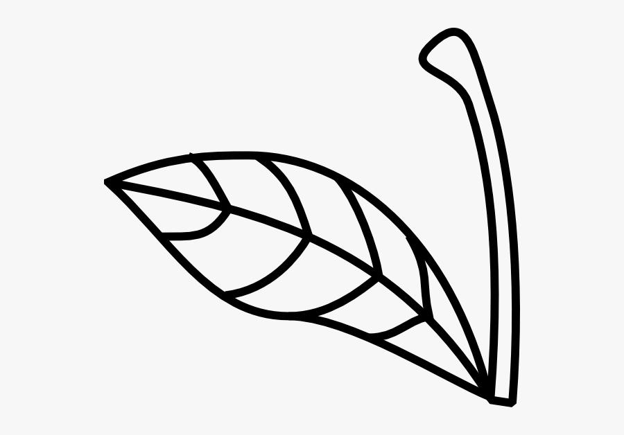 Apple Stem And Leaf Clipart, Transparent Clipart