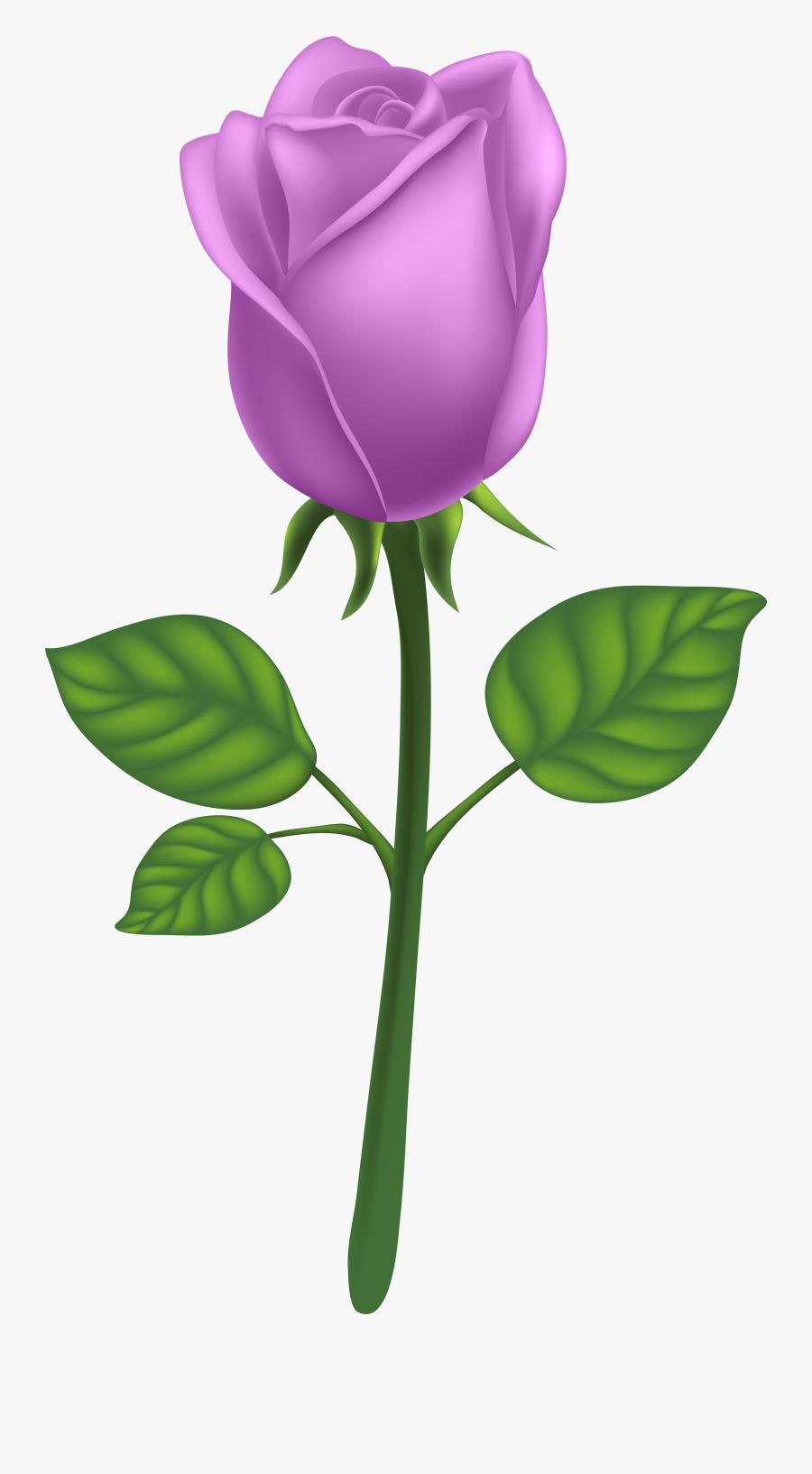 Purple Long Stem Rose Png Clipart , Png Download - Purple Long Stem Rose, Transparent Clipart