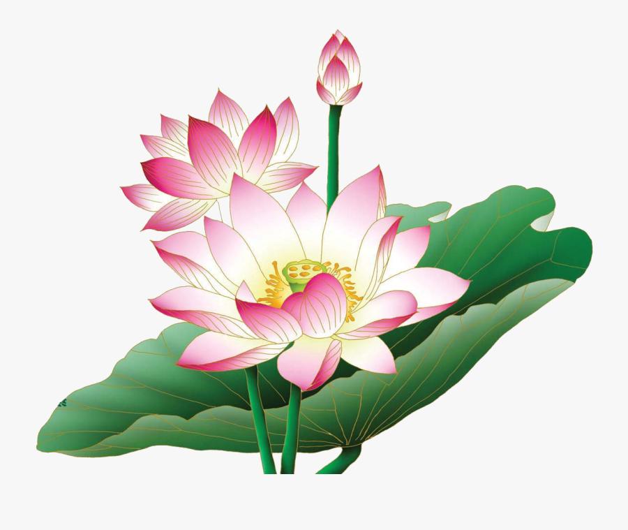 Clip Art Lotus Flower Sayings - Transparent Lotus Flower Png, Transparent Clipart