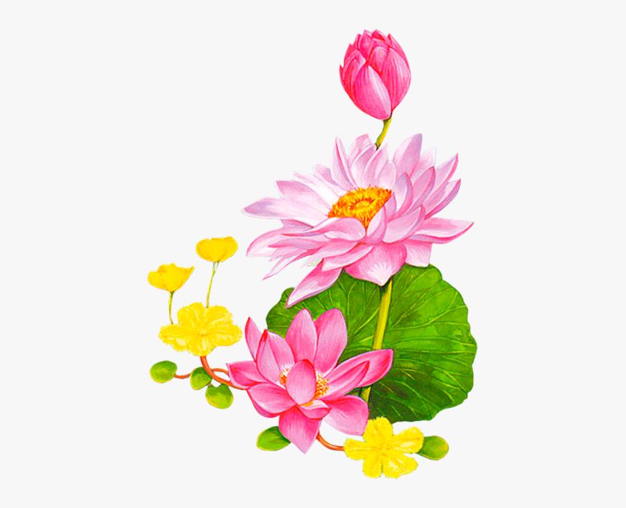 Friendship Flowers, Leaf Clipart, Cartoon Flowers, - Cartoon Lotus Png, Transparent Clipart