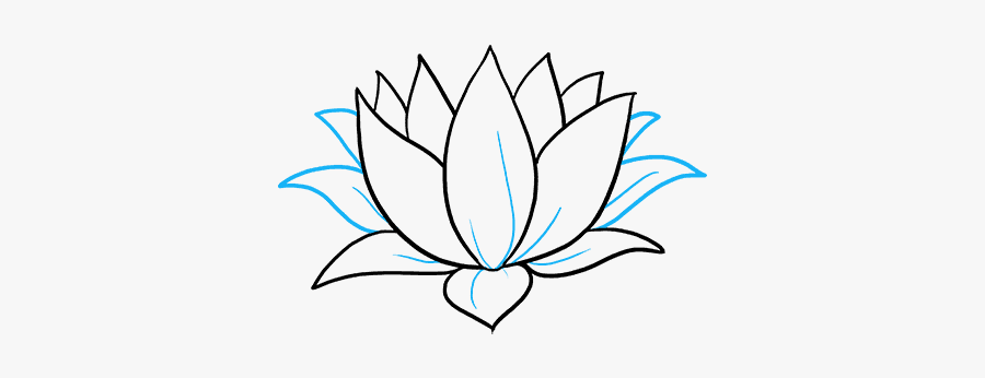 Clip Art How To Draw A - Lily Pad Flower Drawing, Transparent Clipart