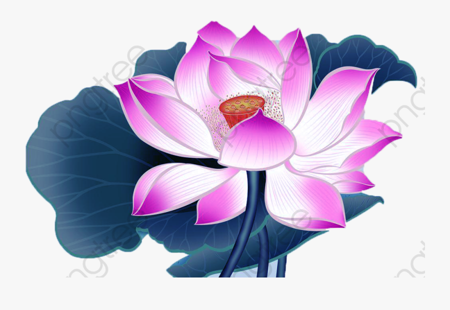 Lotus Clipart Cartoon - Lotus Flower Transparent Background Cartoon, Transparent Clipart