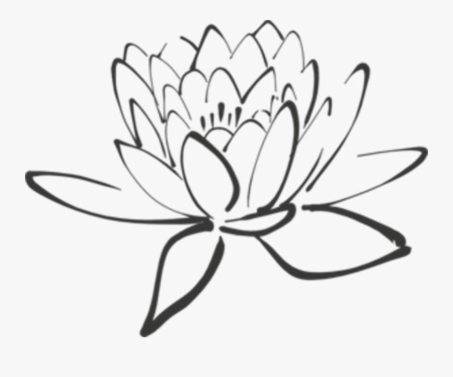 White Lotus Flower Drawing At Getdrawings - Clipart Purple Lotus Flower, Transparent Clipart
