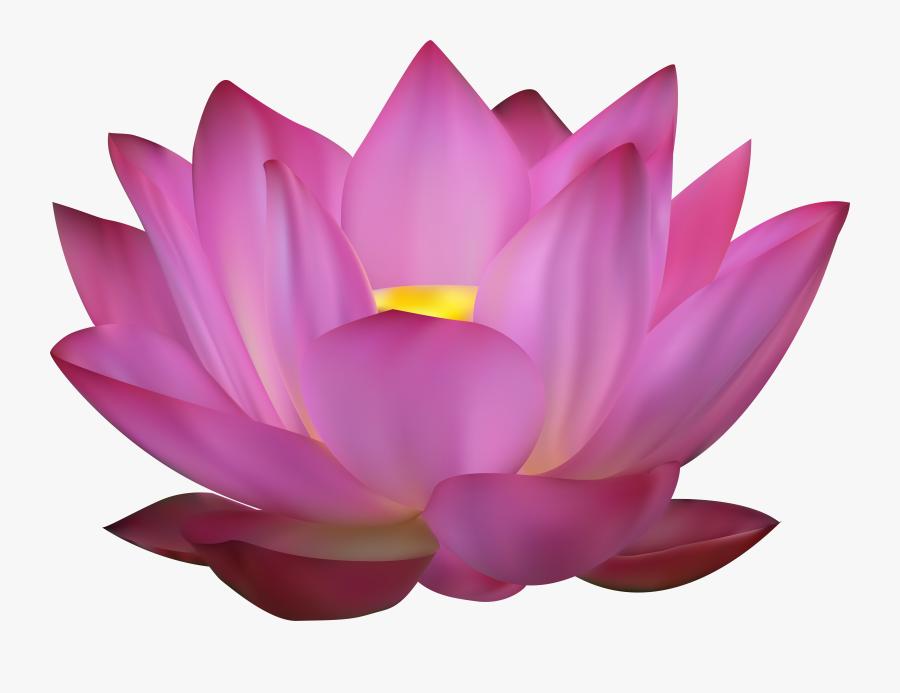 Pink Clip Art Png - Flower Pink Lotus Png, Transparent Clipart