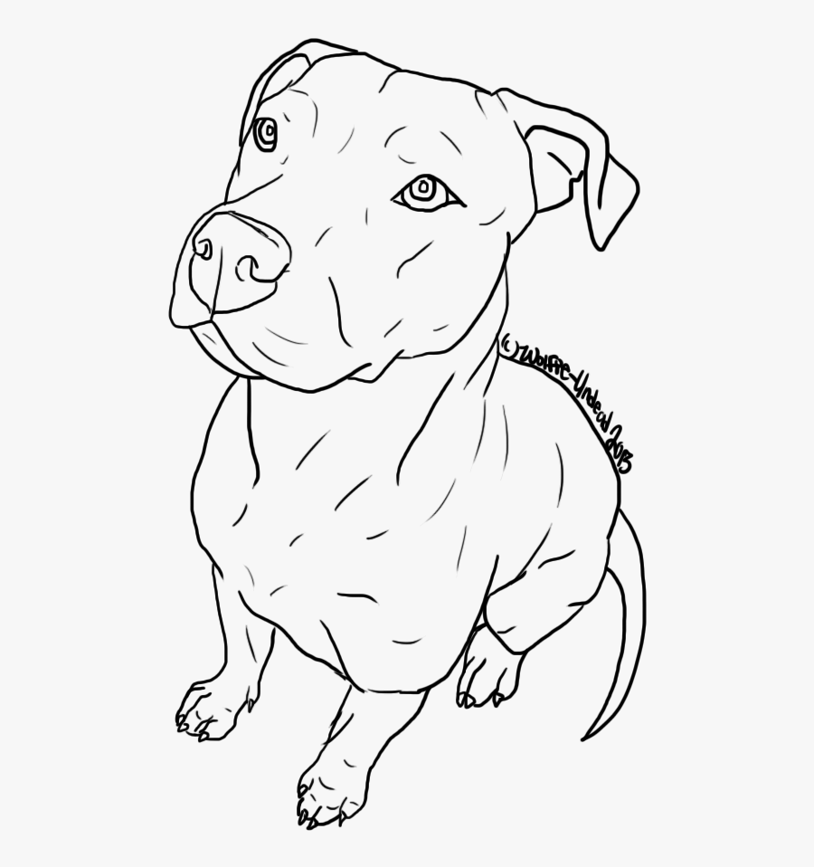 American Pit Bull Terrier Puppy Drawing Line Art - Draw Pit Bull Face, Transparent Clipart