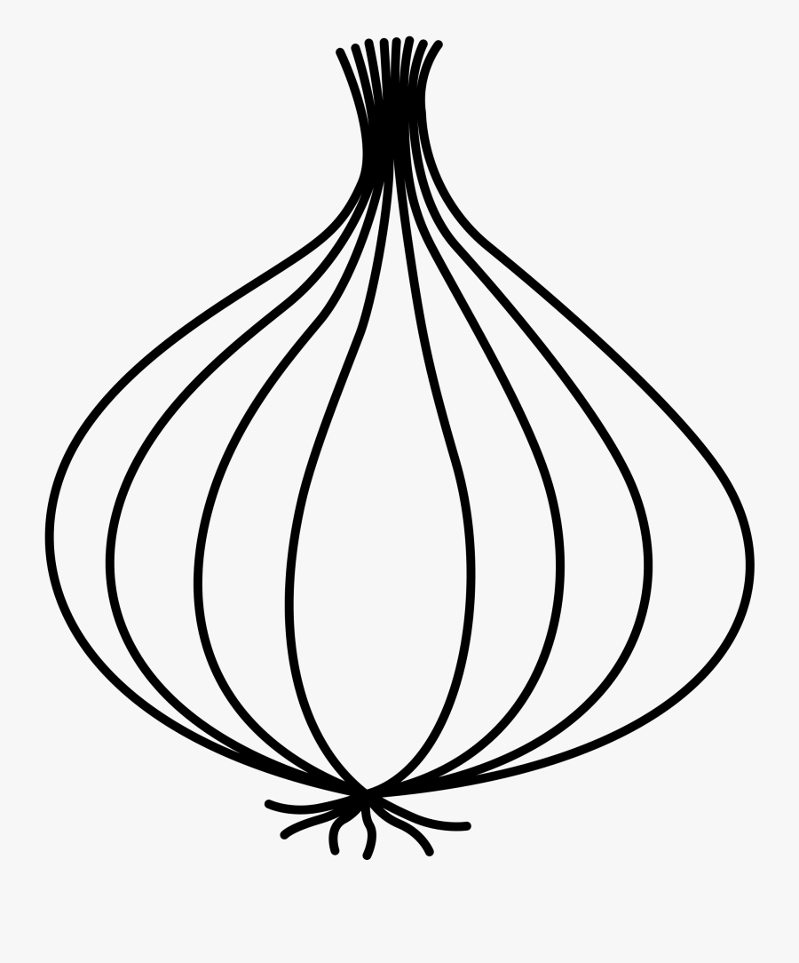 Collection Of Free Onion Drawing Download On Ui Ex - Drawing Picture Of Onion, Transparent Clipart