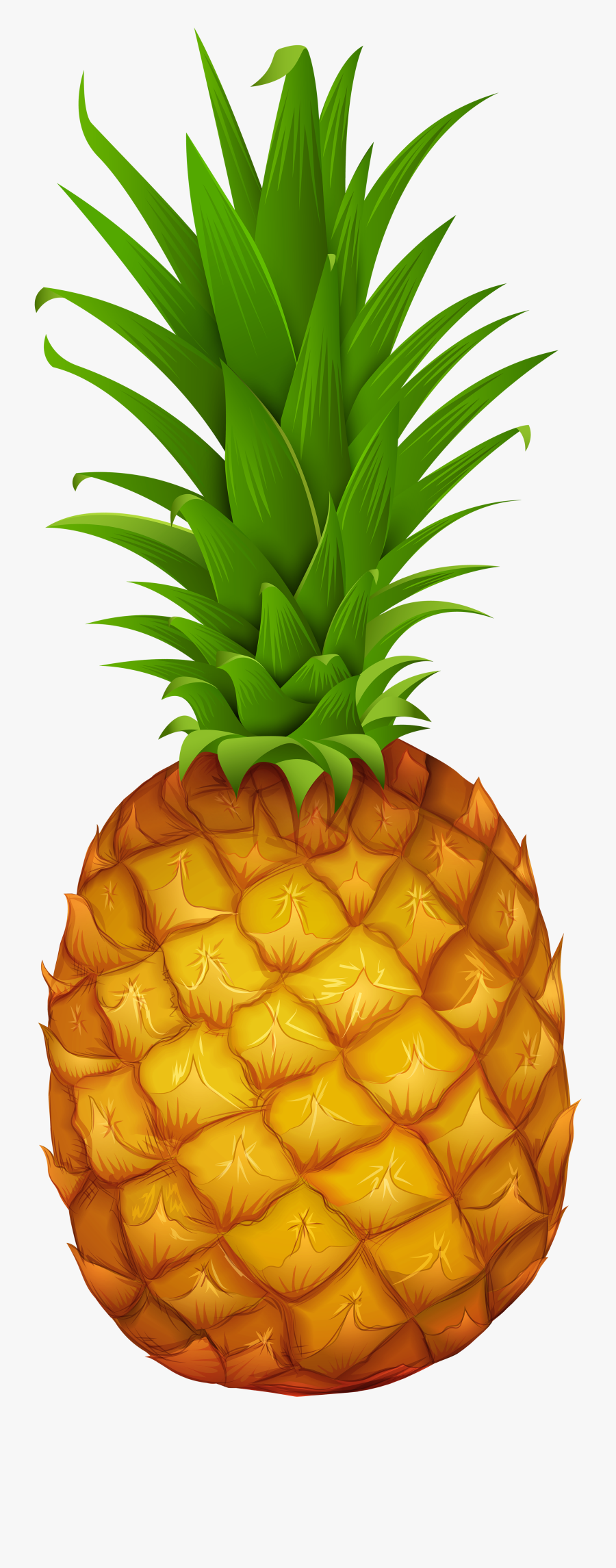 Png Gallery Yopriceville High - Transparent Pineapple Png Clipart, Transparent Clipart