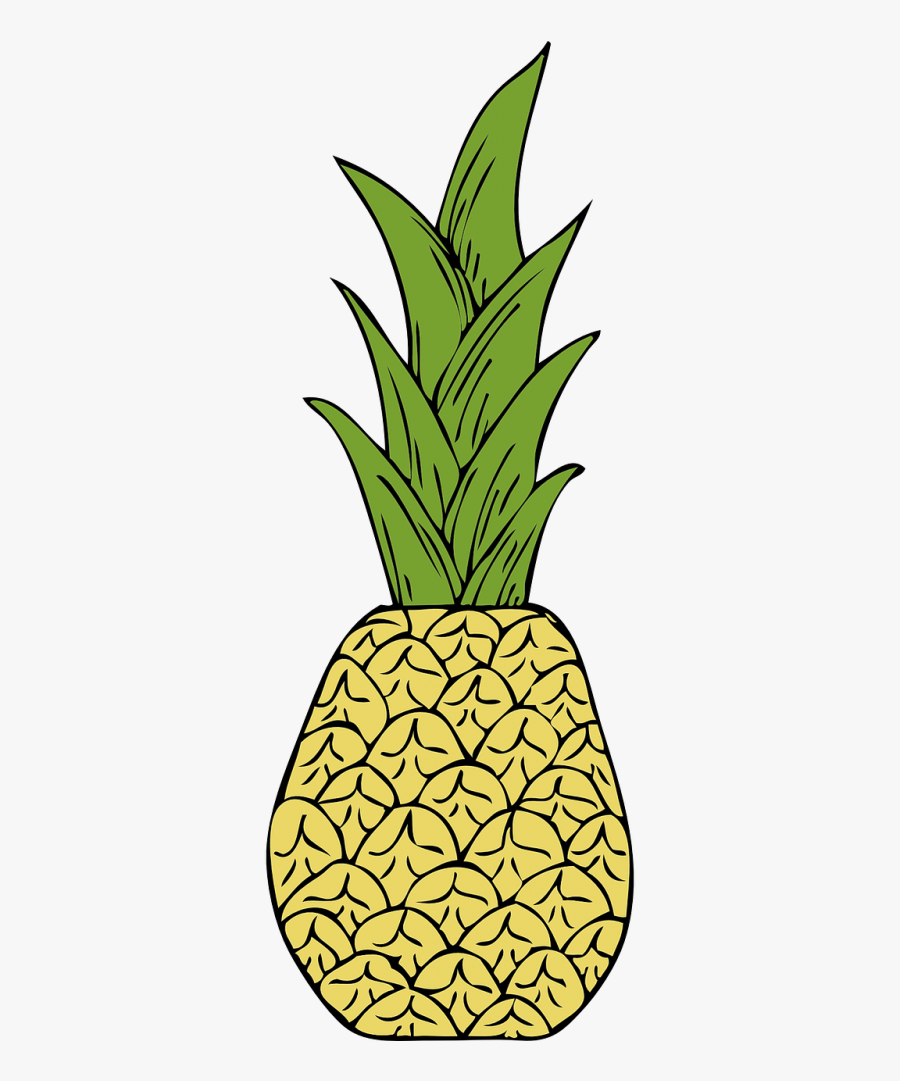 Pineapples Fruit Tropical - Pineapple Png Illustration, Transparent Clipart