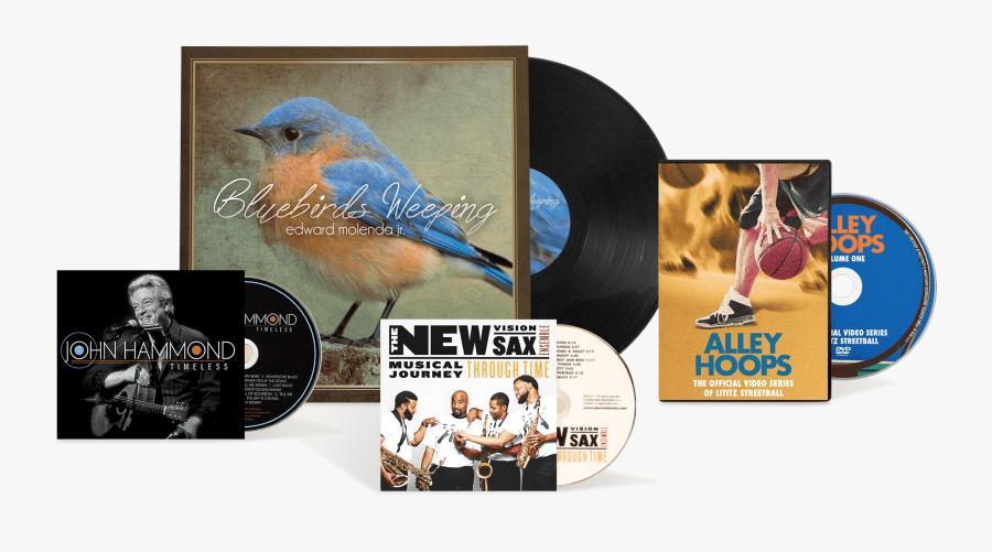 Clip Art Cd Design Album The - Album Cover Disc, Transparent Clipart