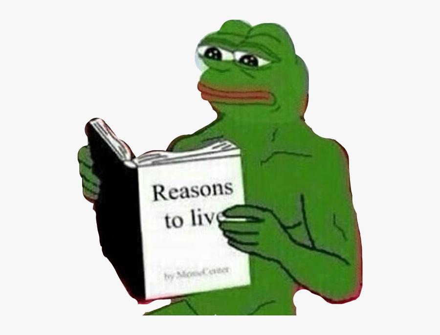 #reasonstolive #frog #frogface #meme #memes #sadfrog - Kermit The Frog Meme Face, Transparent Clipart