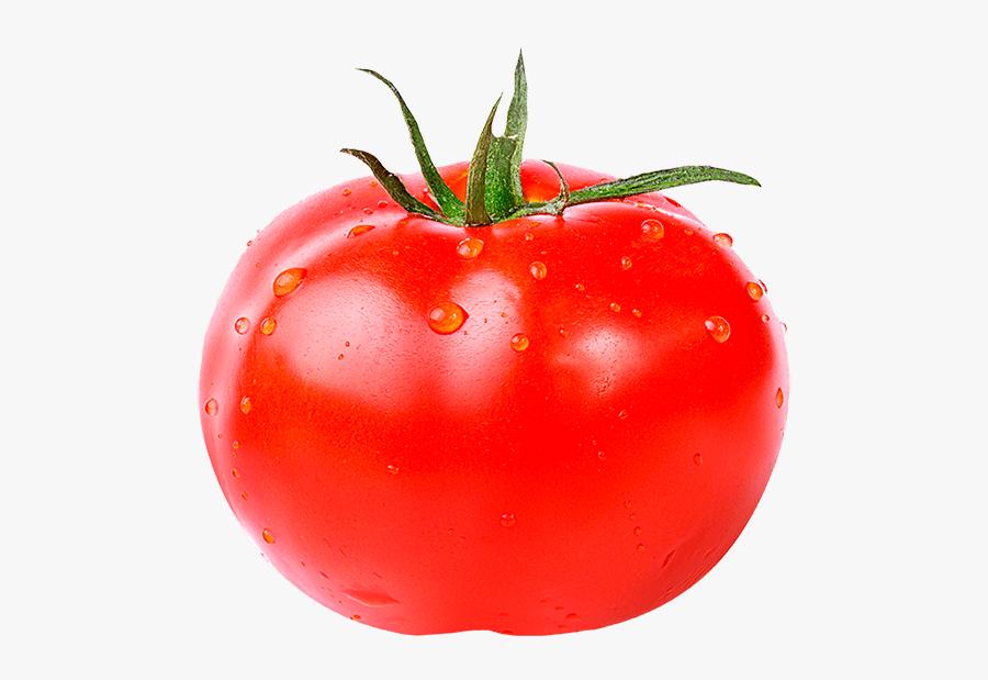 Tomatoes Clipart Watercolor - Tomato Fruit Or Vegetable Meme, Transparent Clipart