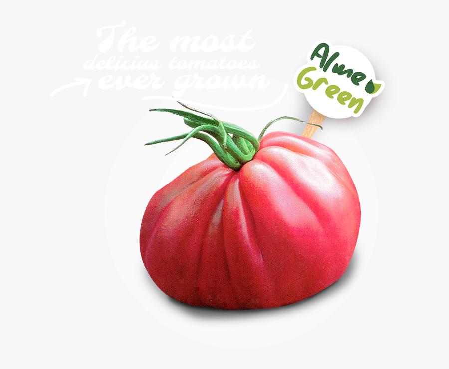 Transparent Tomate Png - Plum Tomato, Transparent Clipart