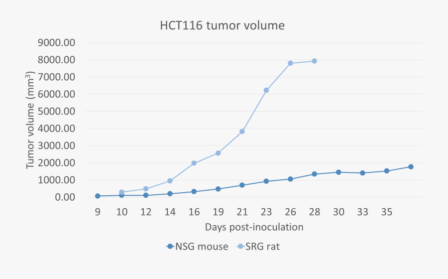 Transparent Tumor Png, Transparent Clipart