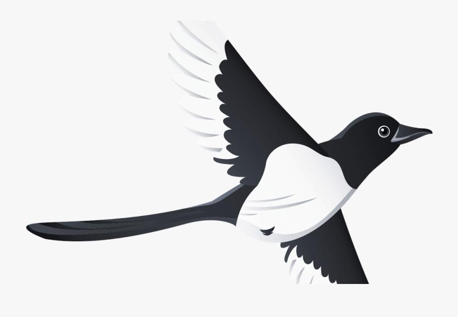 Bird Beak Swallow Tattoo Clip Art Clip Art - Type Of Beak In Swallow Clipart, Transparent Clipart