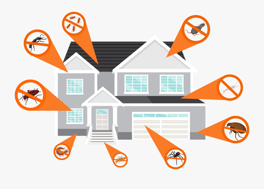 At Havoc Pest Control We Promote The Practice Of Integrated - Pest, Transparent Clipart