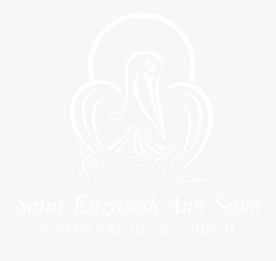 Header Image - Johns Hopkins White Logo, Transparent Clipart