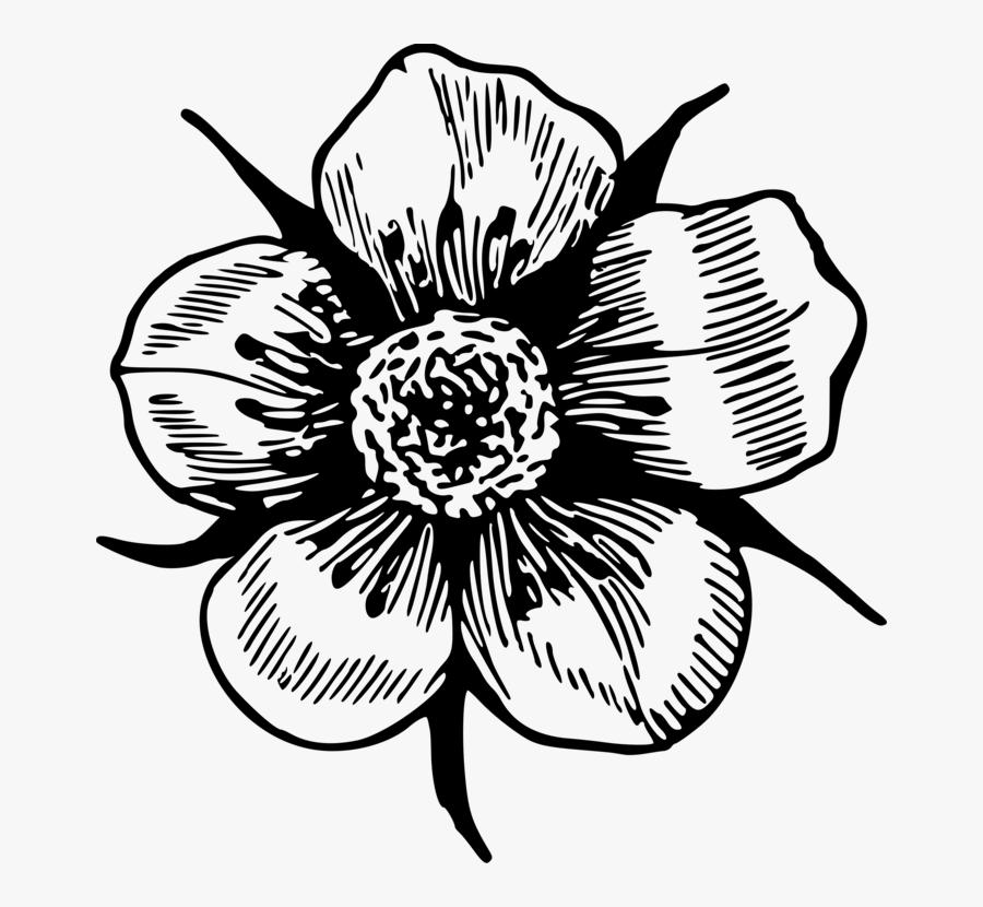 Flower Clipart T Shirt Drawing - Flower Notebook Drawing Designs, Transparent Clipart