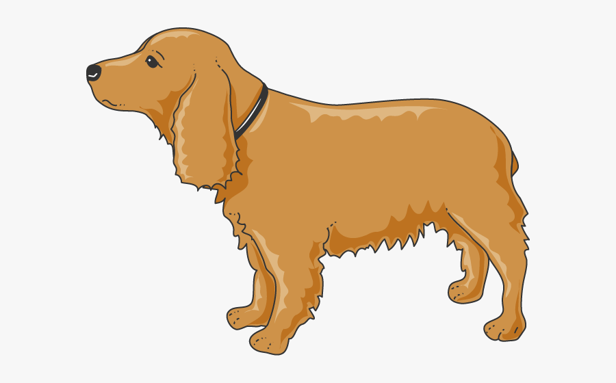 Chien Functional Decomposition Diagram For K9 Free Transparent Clipart Clipartkey